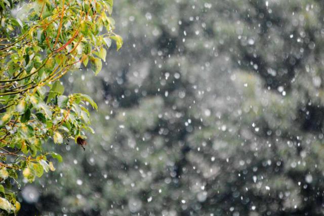 雨夹雪或雪!湖南气温跌至3℃以下!湿冷加倍…