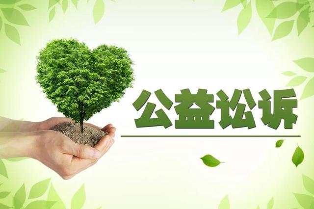湖南一年来公益诉讼检察领域立案8125件