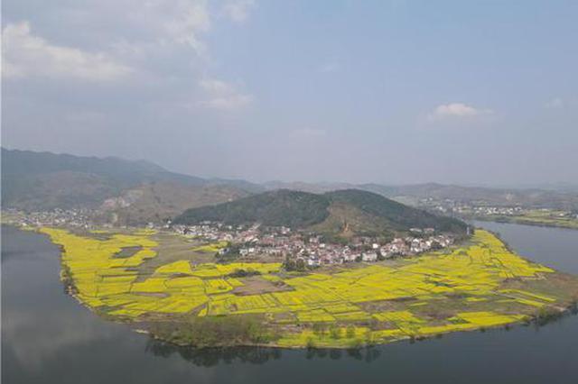 人民网丨湖南衡东:千亩油菜花齐开 唤醒满河春水