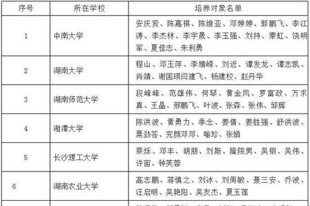 490名!2020湖南普通高校青年骨干教师培养对象正在公示