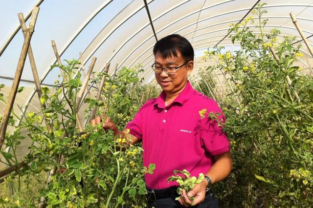 科学农事 |蔬菜育苗那些事,听农业专家刘勇来支招!