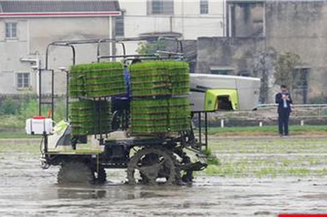 湖南农业新鲜事丨田间农机无人驾驶,农民家中手机种粮