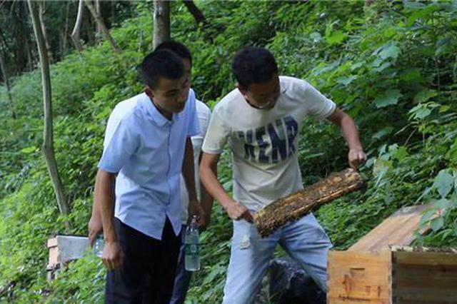 名单定了!湖南5所学校被确定为乡村振兴人才培养优质校