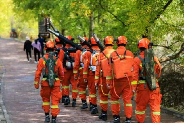 黄色!橙色!湖南发布森林火险预警