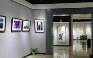 南岳举办书法美术摄影作品展