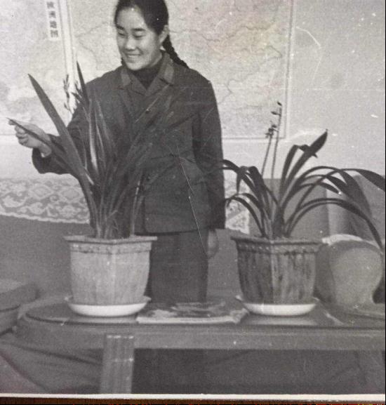 1973年春节,朱新华第一次从广州回北京探亲,特意给爷爷带回两盆兰花作为礼物。