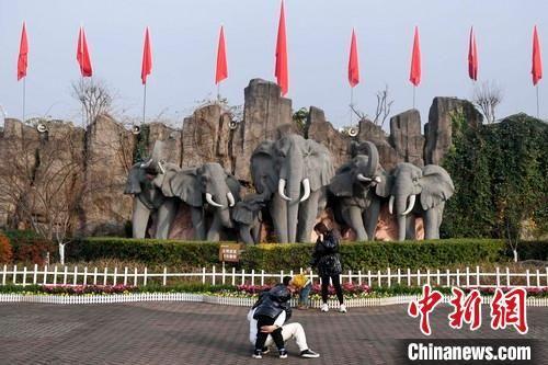 游人在长沙生态动物园内的大象雕像前拍照留念(资料图)。 杨华峰 摄