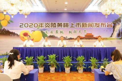 2020年炎陵黄桃上市新闻发布会