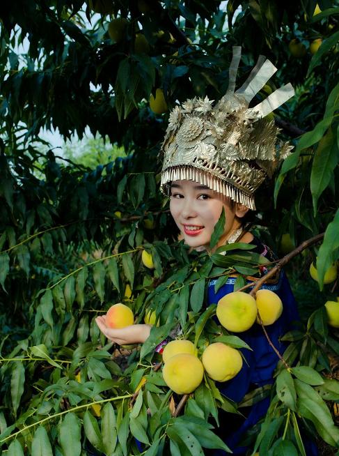 黄丽在兰里镇苍冲村农户家的果园采摘黄桃。受访人供图