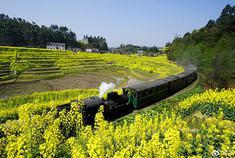 坐上乐山这列开往春天的小火车