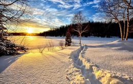 大雪:闲看庭前 梅开雪落
