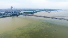 7月12日下午拍摄的超保证水位下的岳阳洞庭湖特大桥。截至7月12日18时,东洞庭湖岳阳市城陵矶(七里山)站已退出保证水位34.55米。  图/新华社