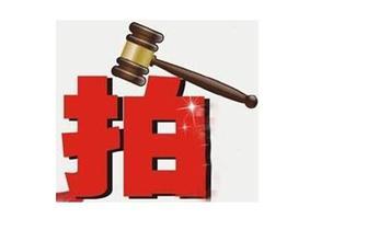 安仁县思源实验学校旁地块以8038万元成交!