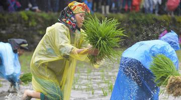 湖南湘西第三届农耕民俗文化节举行
