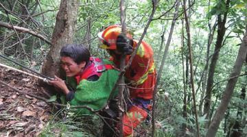 张家界一妇女采蘑菇坠崖 消防紧急救援
