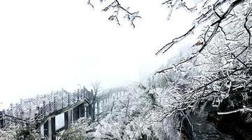 天门山现雾凇景观 部分景点暂停开放