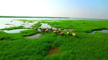 《湖南省洞庭湖保护条例》今年9月1日起施行