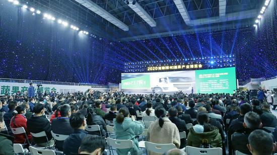 各色果蔬奇相聚!湖南(郴州)蔬果产业博览会盛大开幕