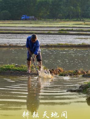 劳动图鉴丨连接人与土地 耕耘天地之间