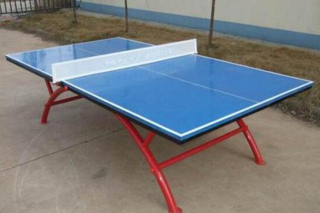 娄底5少年用压岁钱为家乡小学捐赠乒乓球网