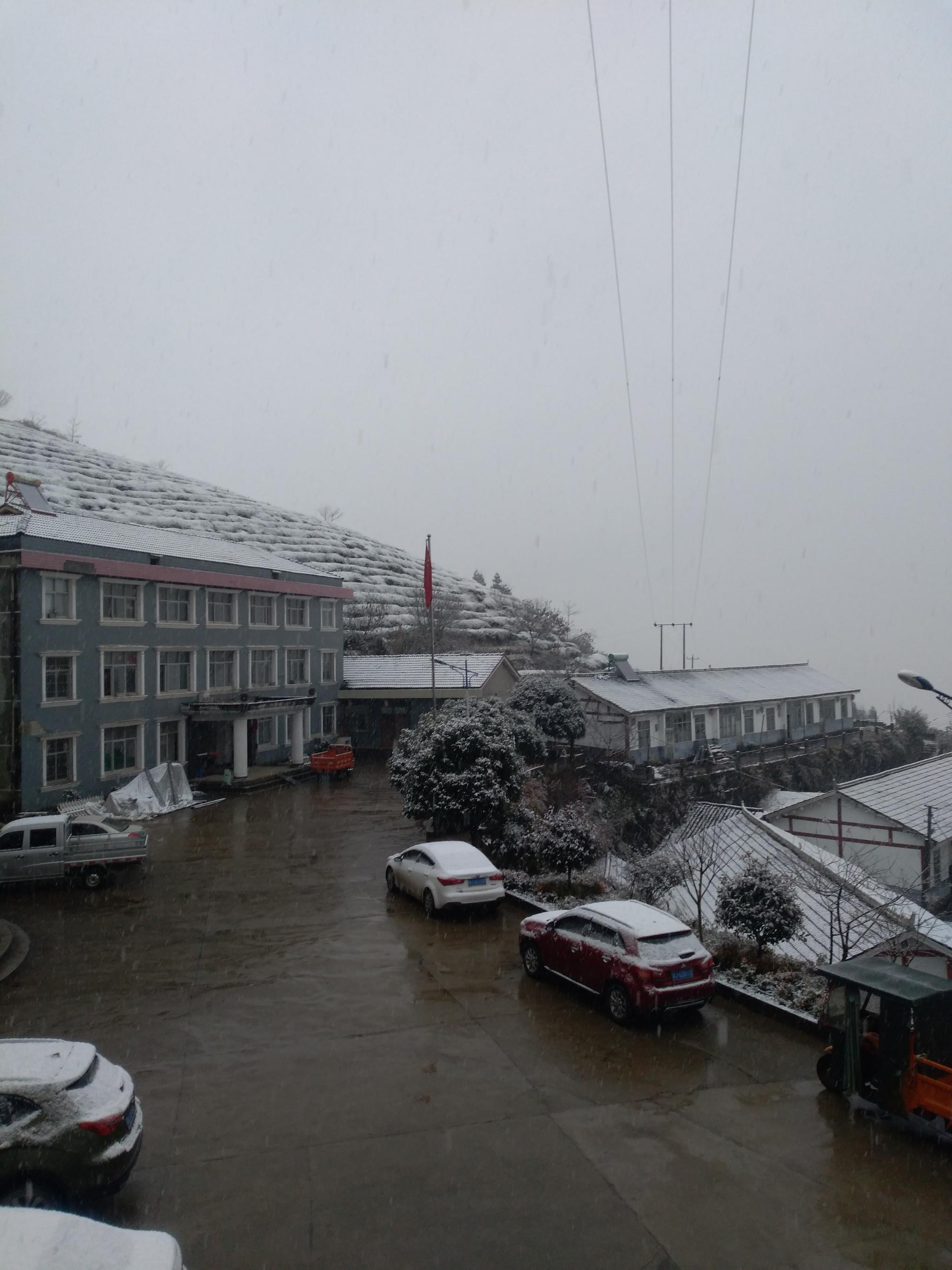 千树万树雪花开 常德石门东山峰迎来今冬首雪