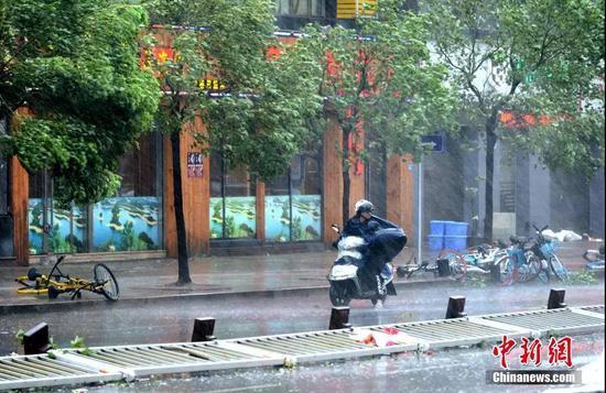 福建宁德市区风雨大作。王东明 摄