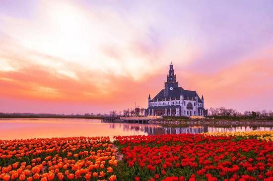 小城一到春天就美成摄影界的网红