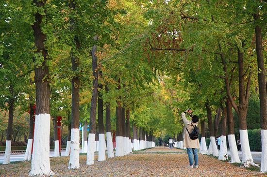 南京发力建公园:到2035年拟实现三百米见绿、五百米入园