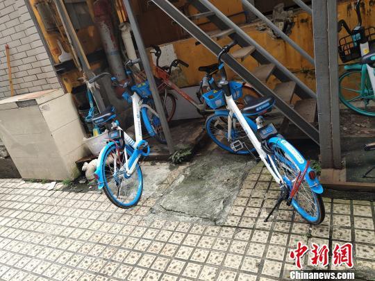 共享单车被加上私锁 李洪 摄