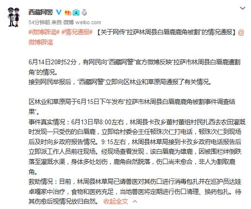 图片来自@西藏网警