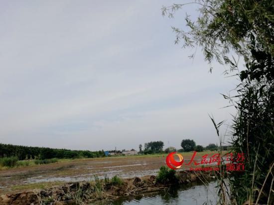 http://www.nthuaimage.com/shishangchaoliu/29769.html