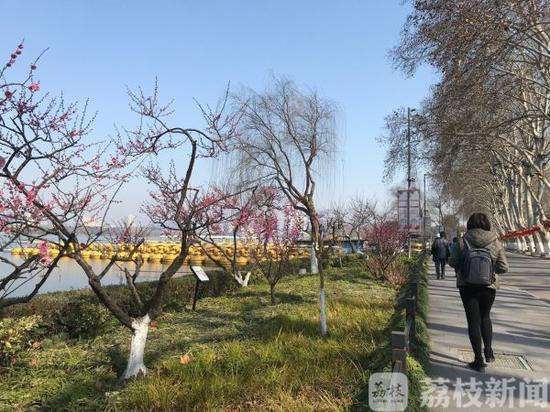 南京各大景区陆续恢复开放 玩耍记得佩戴口罩