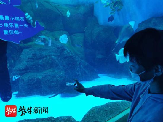 """""""美人鱼""""在水里隔着玻璃给晨晨送上祝福。 朱鼎兆 摄"""