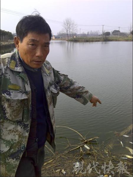 蹊跷!养殖水域里鱼不停疯狂打转,之后陆续死亡