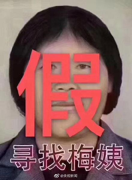 """公安部辟谣:网传""""梅姨""""第二张画像非官方发布信息"""