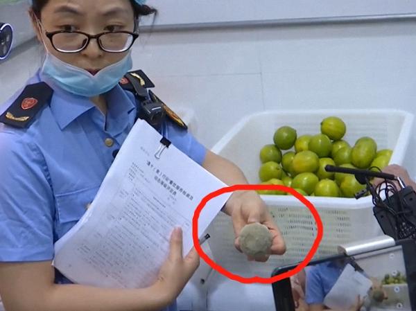 执法人员在CoCo奶茶店发现一只霉变的柠檬