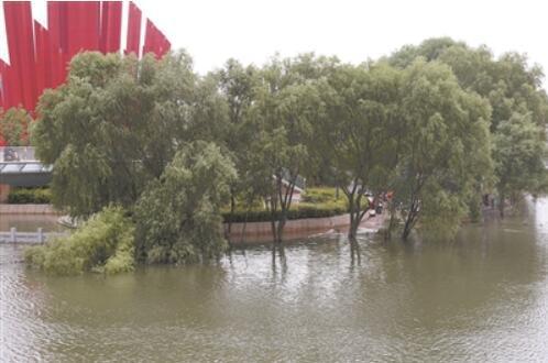 16日,南京长江岸边的树木、步行道淹没在上涨的江水中。宋 宁摄