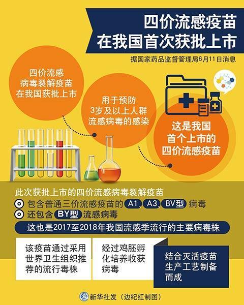 图表:四价流感疫苗在我国首次获批上市 新华社发 边纪红 制图