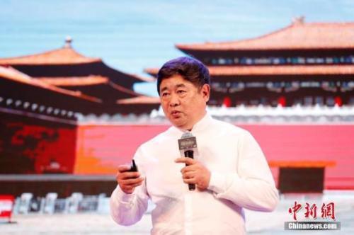 资料图:单霁翔。中新社记者 刘关关 摄