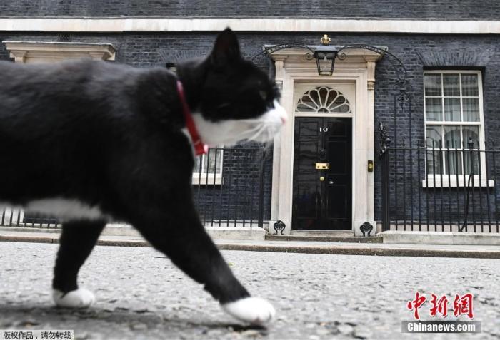 """英国外交部""""首席捕鼠官""""帕默斯顿。"""