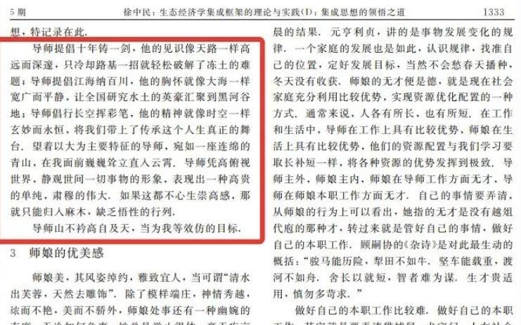 徐中民对导师崇高感的论述总结。论文截图