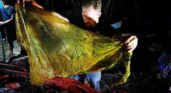 (图为在死亡柯氏喙鲸胃中发现的垃圾。)