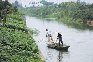 """泗阳评选""""不合格河长"""" 逼干部常在河边跑"""