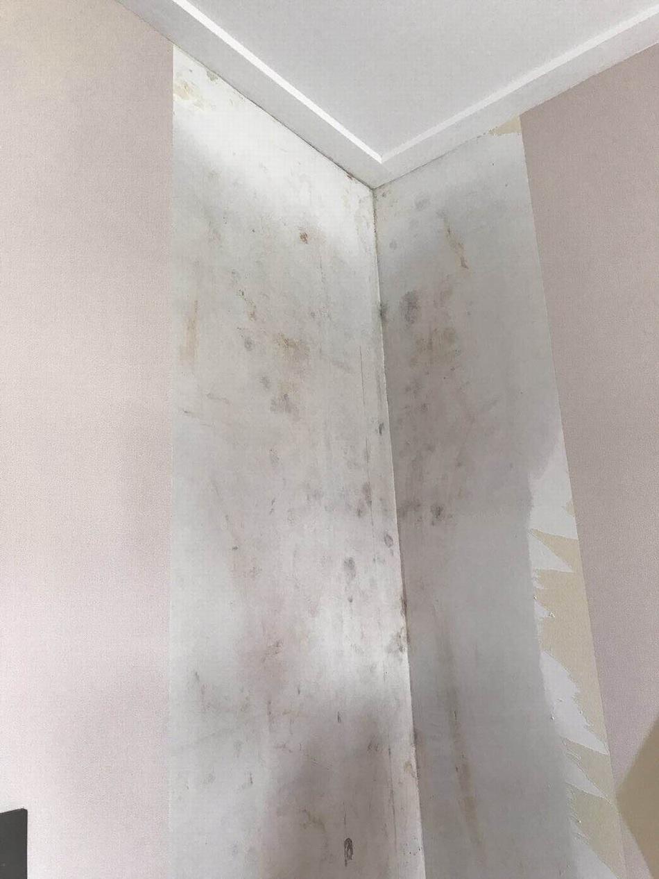 房屋内部渗漏水,引发墙纸鼓起、发霉。