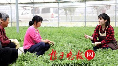 蓉蓉(右)教乡亲们种植冰草。
