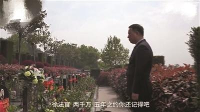 赵璇站在徐法官墓前。截图来自梨视频