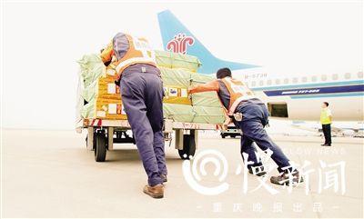 """在宛如""""铁板烧""""的停机坪上将货物挂车人工推到机舱下"""