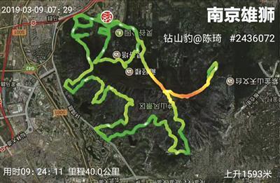 """南京这群跑步爱好者火了 花式跑步跑出一个""""动物园"""""""