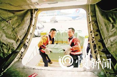 ▲将货物抬进飞机货舱