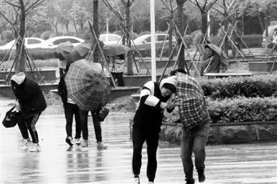 我省昨迎疾风骤雨,气温猛降令人措手不及。朱泓明 摄 视觉江苏网供图